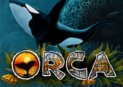 Orca game slot